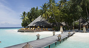 Velaavani Bar, Angsana Ihuru Malediven
