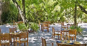 Restaurant Cowrie, Coco Palm Dhuni Kolhu