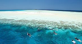 Schnorcheln und Tauchen, Filitheyo Island Resort
