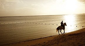 Reiten am Strand, Shanti Maurice Resort & Spa