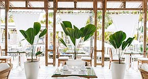 The Dining Room, Paradise Cove Boutique Hotel Mauritius