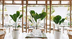 Hauptrestaurant The Dining Room vom Paradise Cove Boutique Hotel, Mauritius
