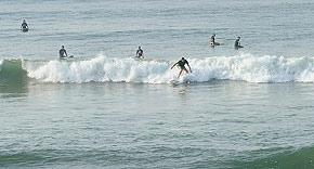 Surfers am Strand, Apa Villa Thalpe Sri Lanka
