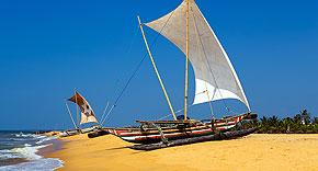 Strand von Negombo, Sri Lanka