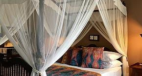Zimmer Deluxe vom La Maison Nil Manel, Sri Lanka