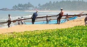 Am Strand von Ahungalla, La Maison Nil Manel, Sri Lanka
