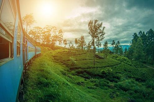 Sri Lanka Ella Landschaft