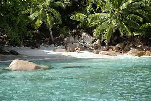 Anse Lazio, Seychellen
