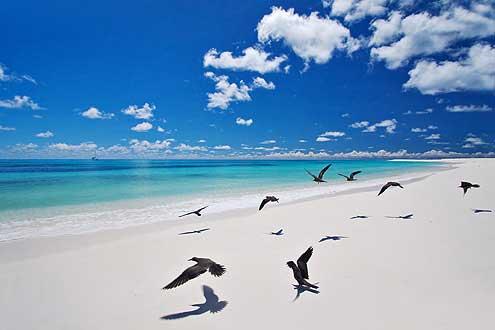 Bird Island, Seychellen