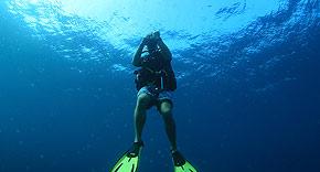 Tauchen im Noonu Atoll auf Noku Maldives