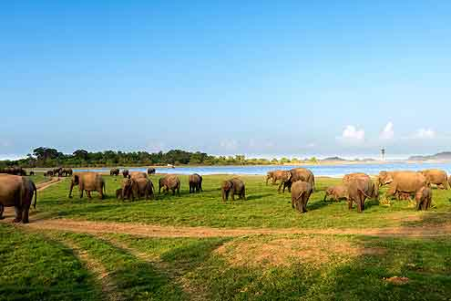 Stausee auf Sri Lanka
